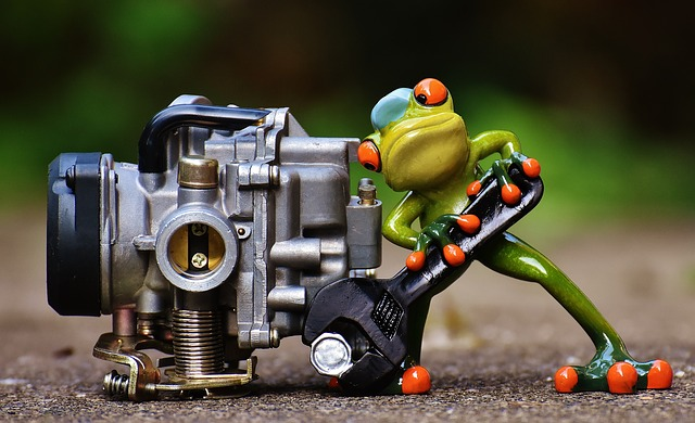 frog-1672974_640